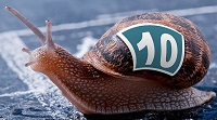 A Racing Snail in a virtual race